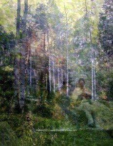 Forest Prayer