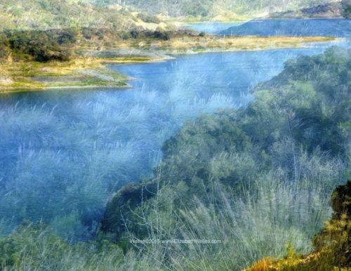 Sea Aqua Agua