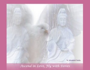 Ascend in Love 1 fly with doves Blessed Wings copy 4